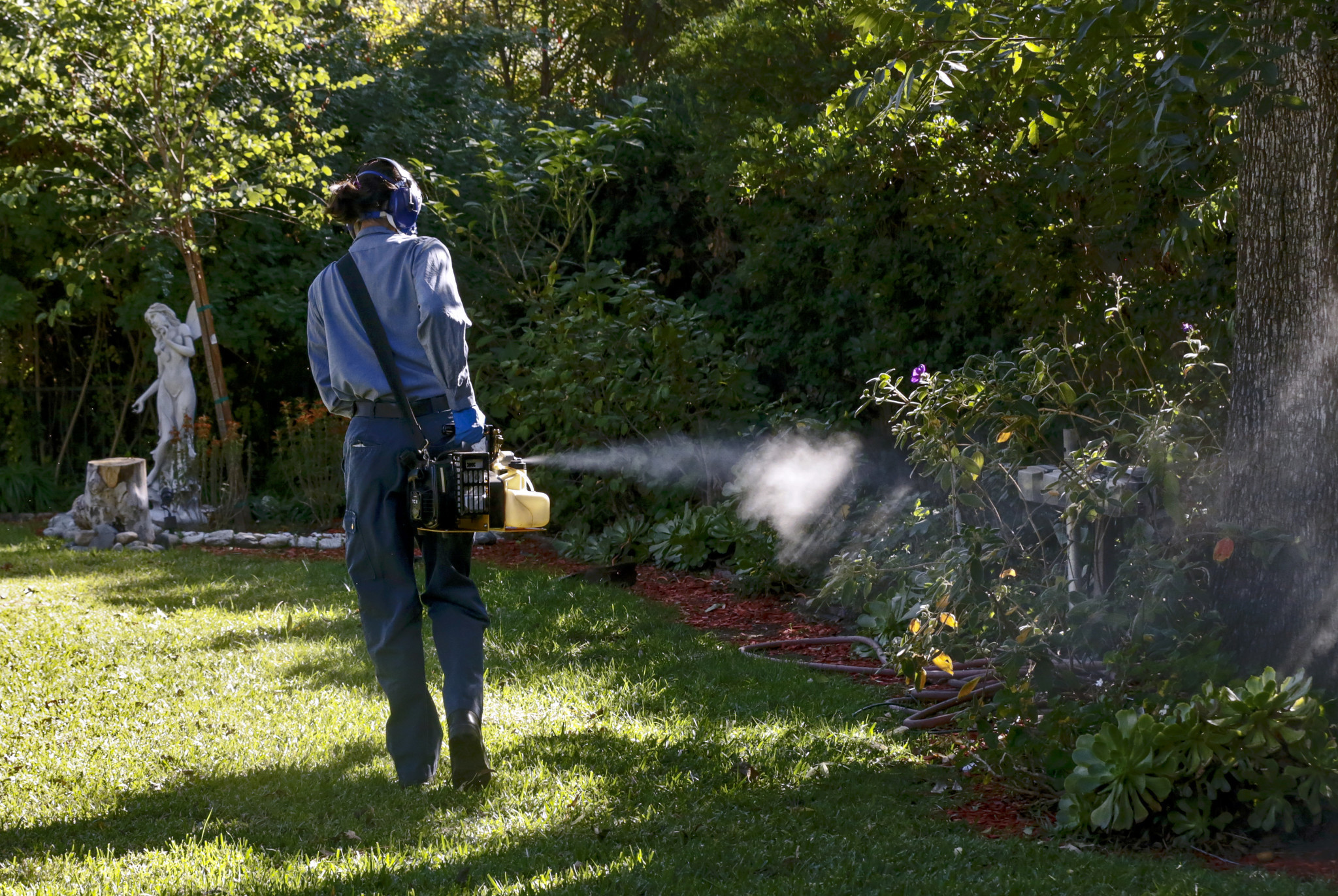 Zika virus is here to stay. Here's how California is preparing for that new reality