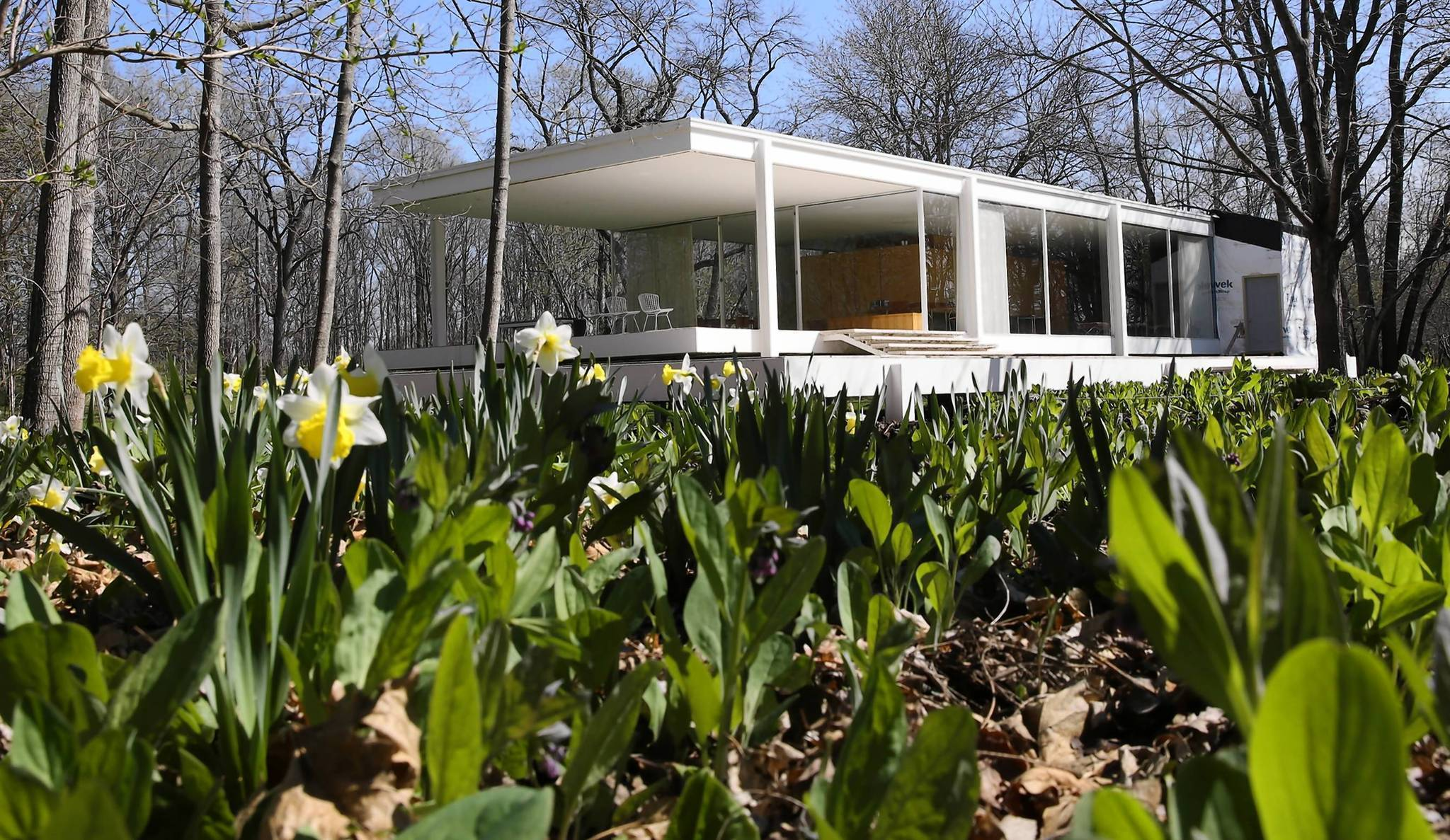 Rumored jeff bridges movie excites fans of architect mies for The farnsworth