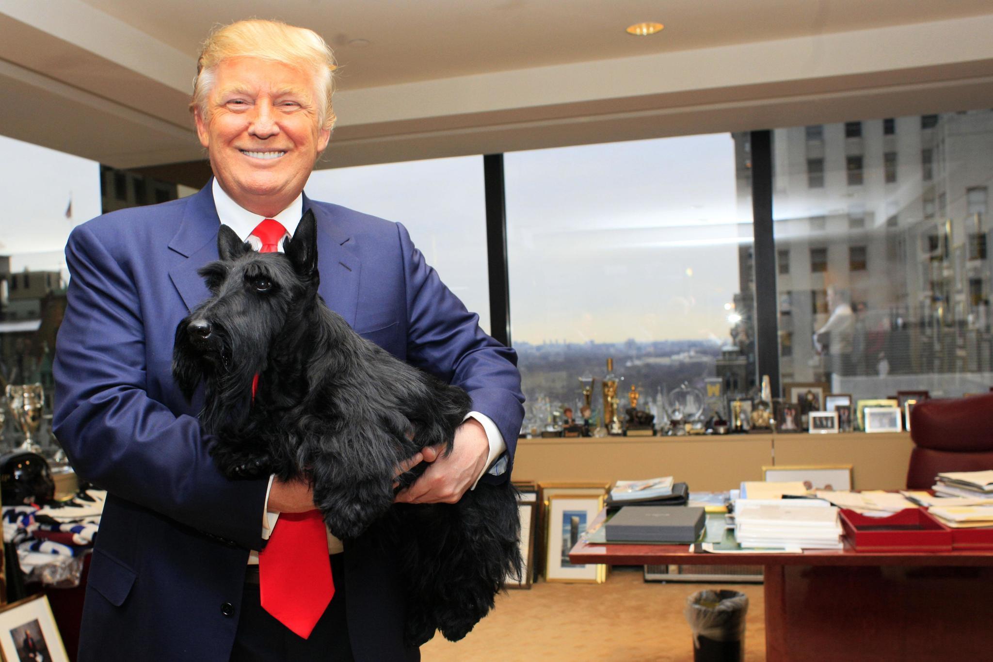 List Of Winners Of Kennel Club Philadelphia Dog Show