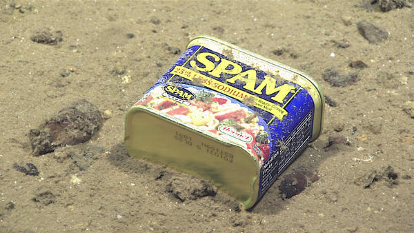 NOAA discovered this perfectly preserved can of SPAM resting at the bottom of the ocean (4947 meters) on the slopes of a canyon leading to the Sirena Deep ... & L.A.Times Crossword Corner: Tuesday February 21 2017 Bruce ... 25forcollege.com