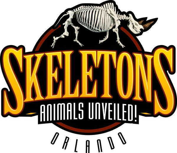 Skeletons: Animals Unveiled