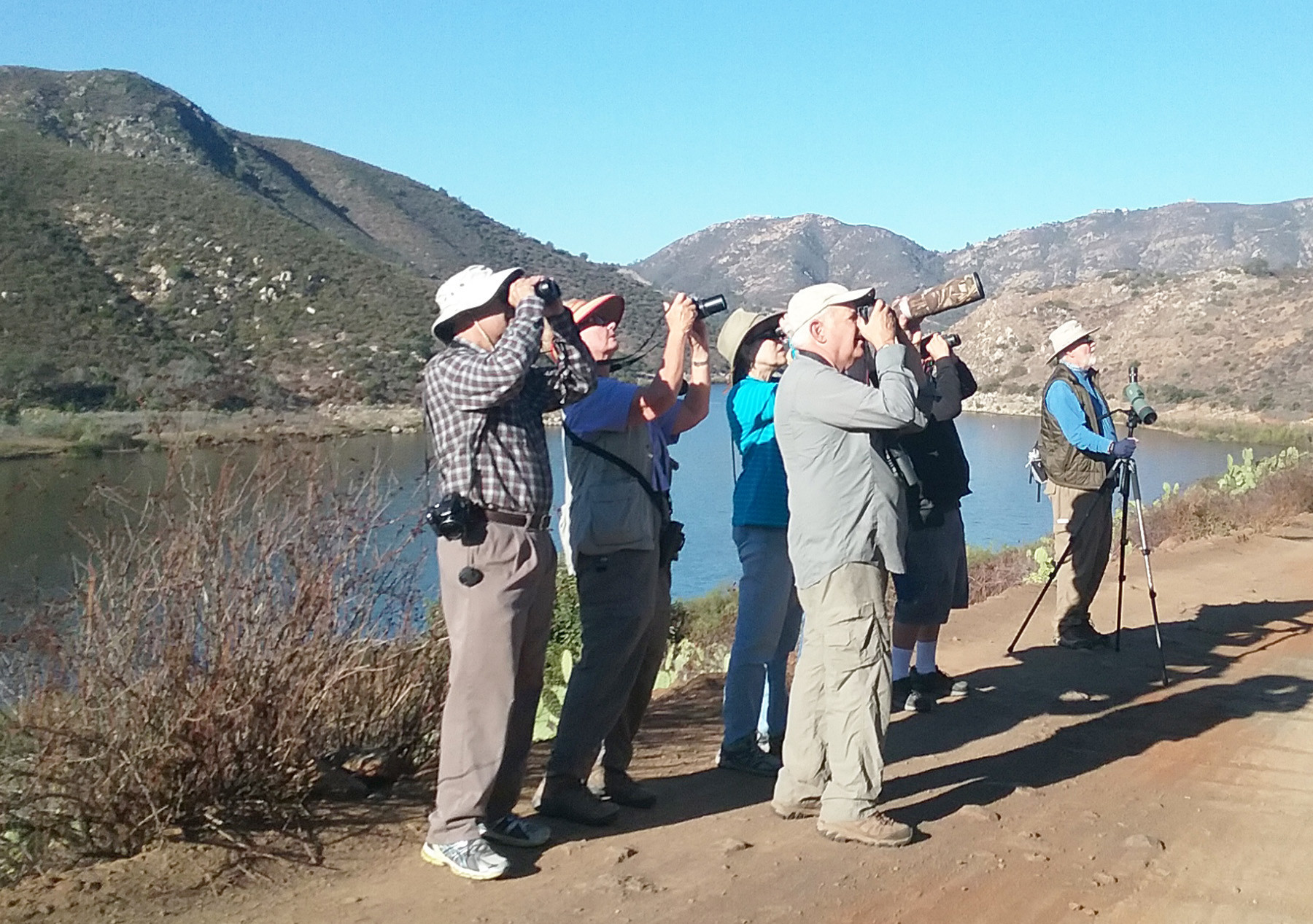 Palomar Audubon volunteers conducting a bird survey on Bernardo Mountain.