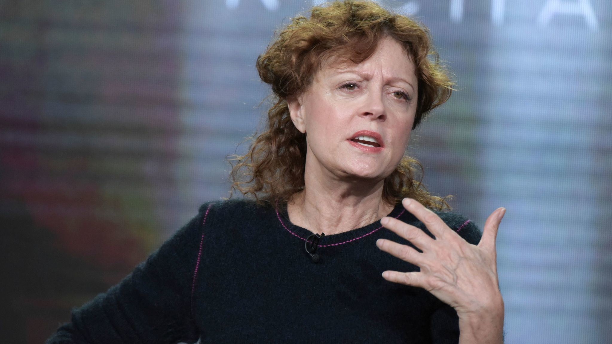 Susan Sarandon last month. (Richard Shotwell / Invision)