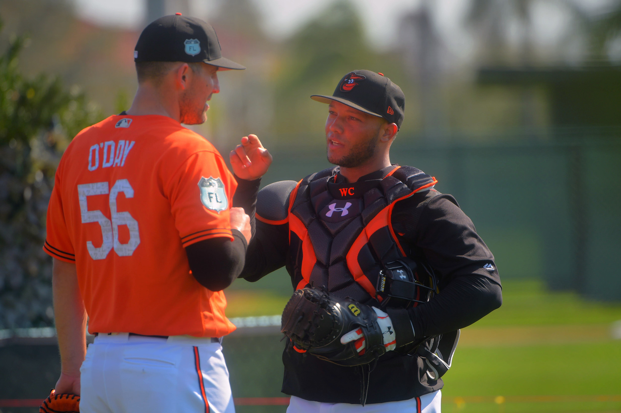 Bal-roughly-speaking-orioles-spring-training-2017