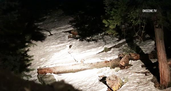 A landslide was reported in Forest Falls. (OnScene.TV)