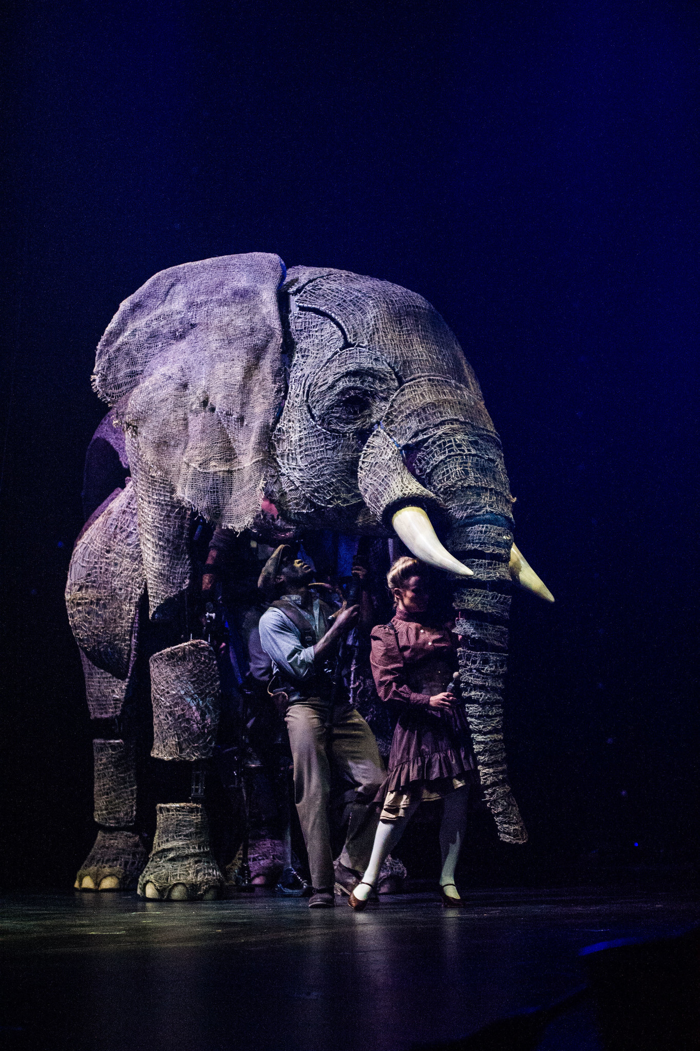 """The creative team behind the """"War Horse"""" puppetry designed the lifelike elephants in """"Circus 1903."""""""