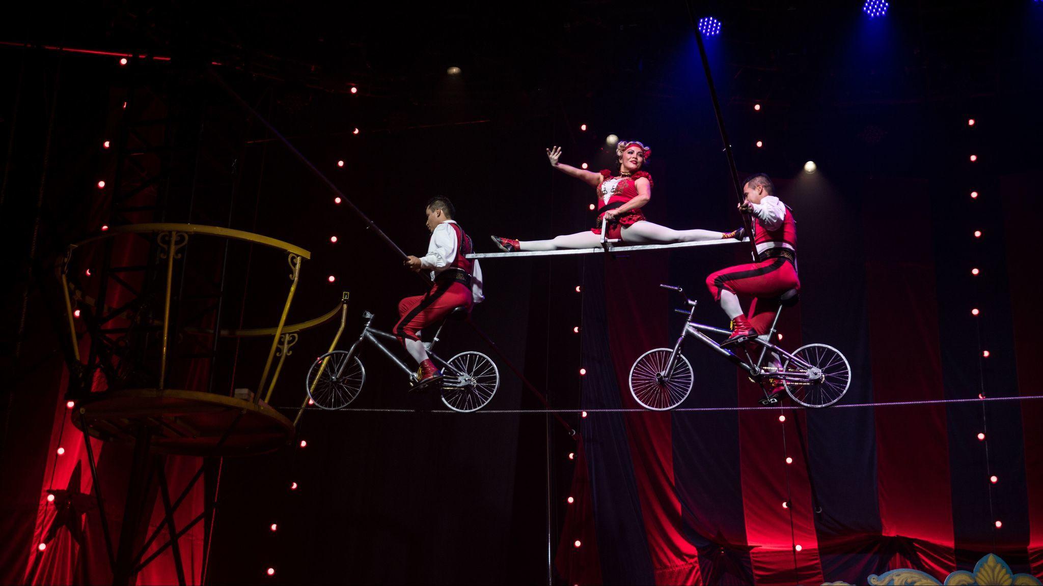 """""""Circus 1903"""""""