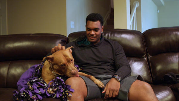 Ravens' Ronnie Stanley and his 'not-so-adoptable' dog from BARCS to be featured on Animal Planet