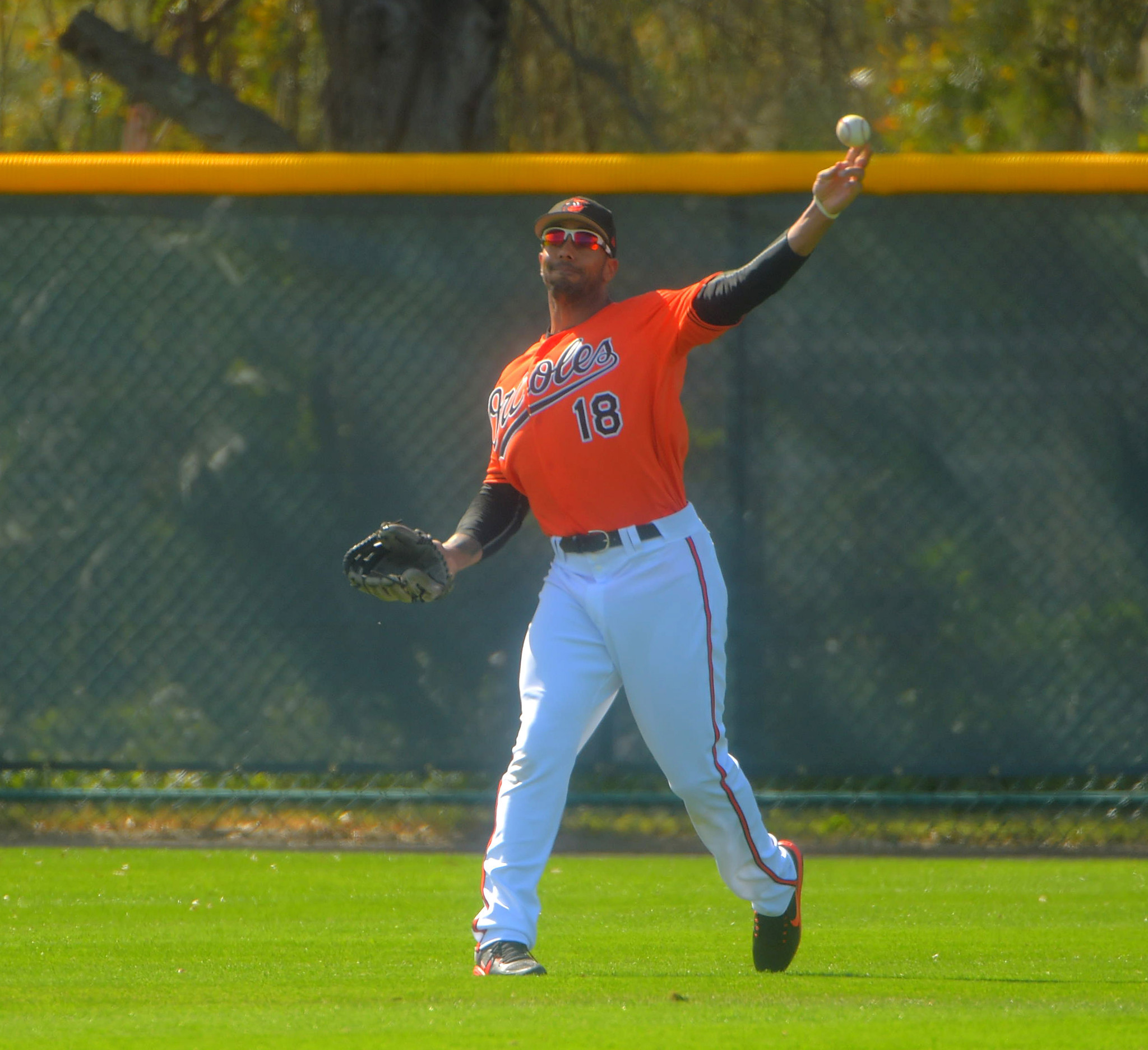 Bal-at-age-34-outfielder-chris-dickerson-opening-some-eyes-in-orioles-camp-20170301