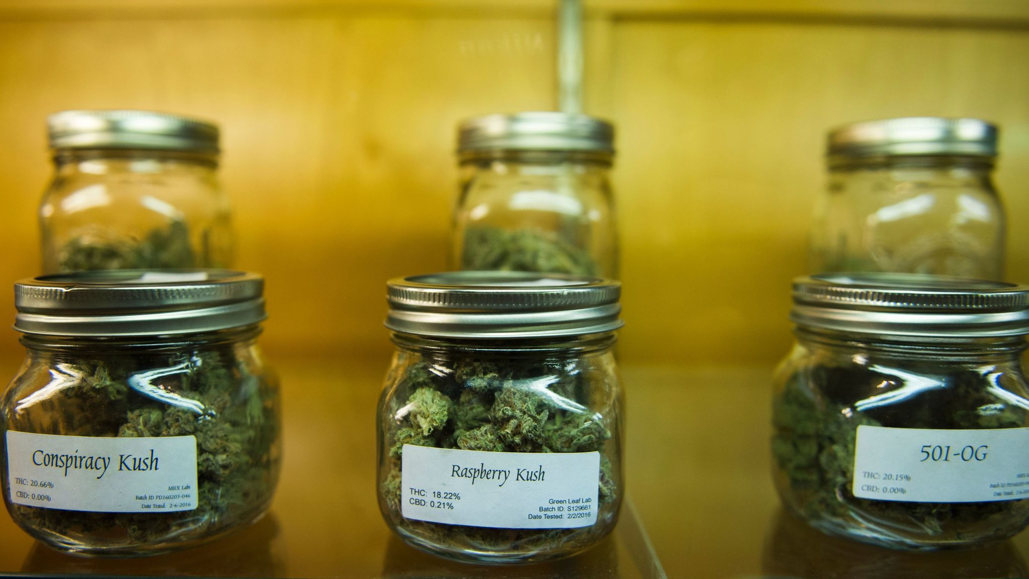 an argument in favor of the legalization of marijuana in california The roots of marijuana an argument for legalization of marijuana law in the us  california legalized marijuana  americans are more in favor my place in society.