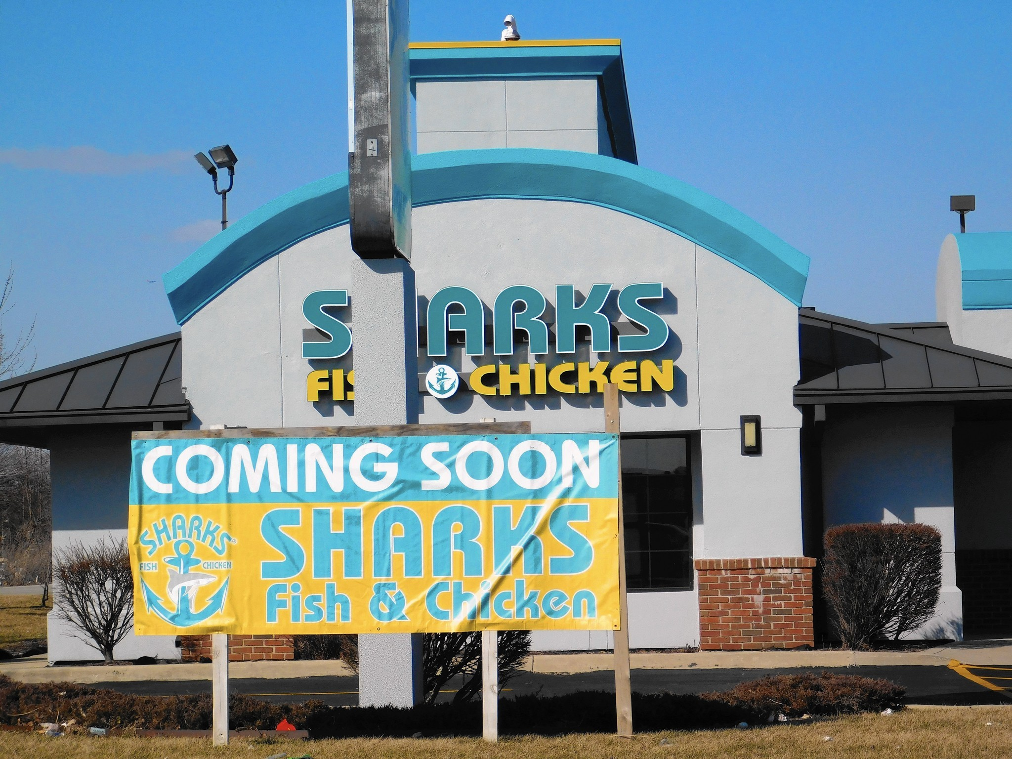 Sharks sighted in orland park daily southtown for Sharks fish and chicken locations