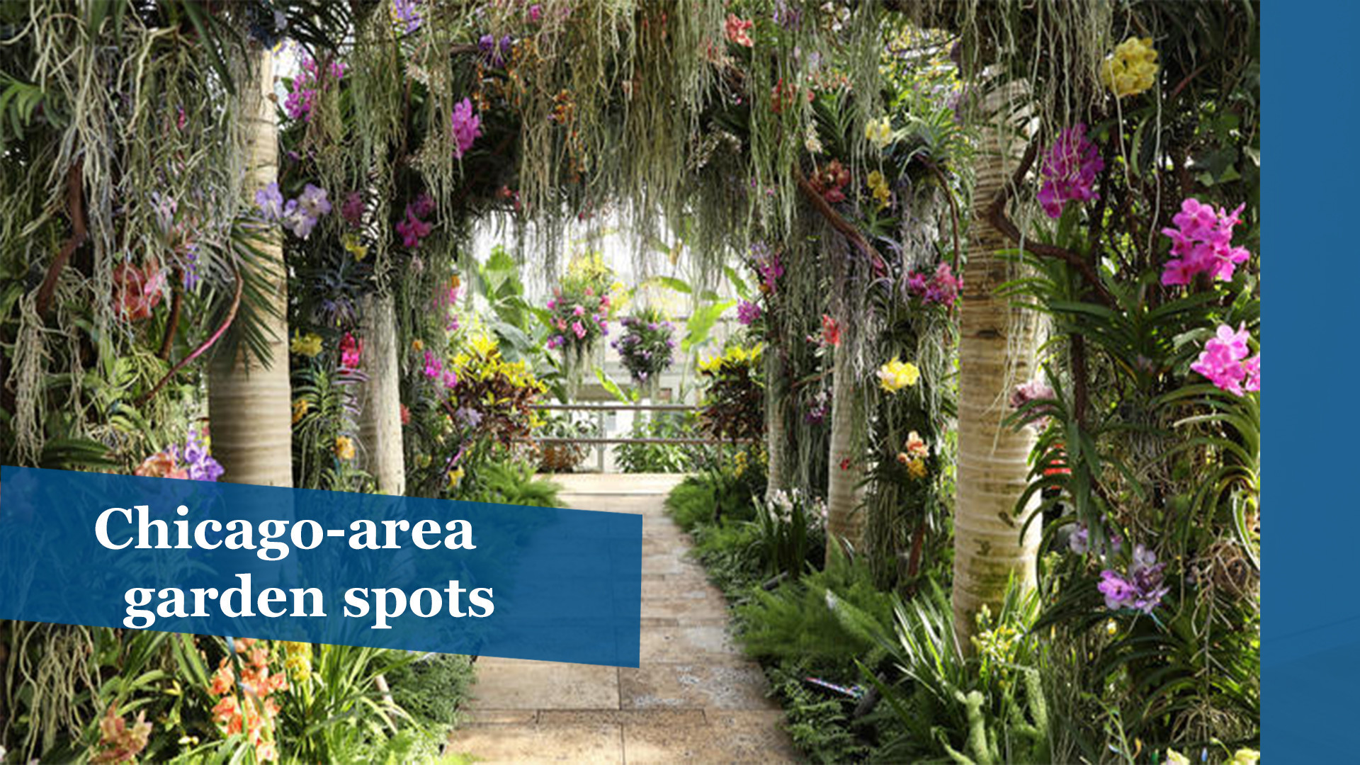 Chicago Area Garden Spots To Visit This Spring
