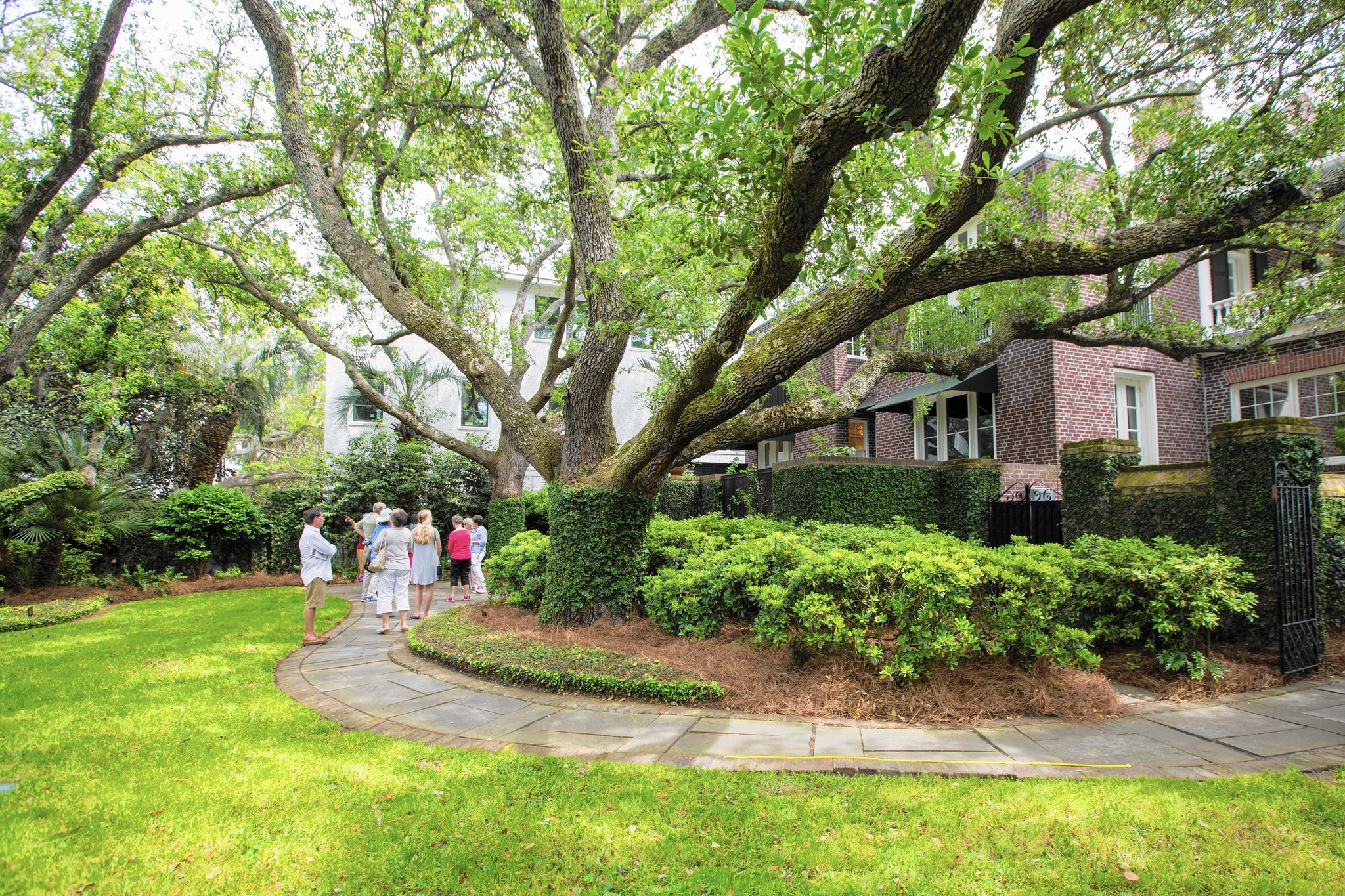 Visit Charleston in the spring for blooming festival and food scene on long house designs, san francisco house designs, west coast house designs, carriage house designs, anderson house designs, foxtrot house designs, san diego house designs, carolina house designs, bunker house designs, louisiana house designs, jakarta house designs, pueblo house designs, low country house designs, florida house designs, hurricane house designs, chicago house designs, austin house designs, arizona house designs, miami house designs, key west house designs,
