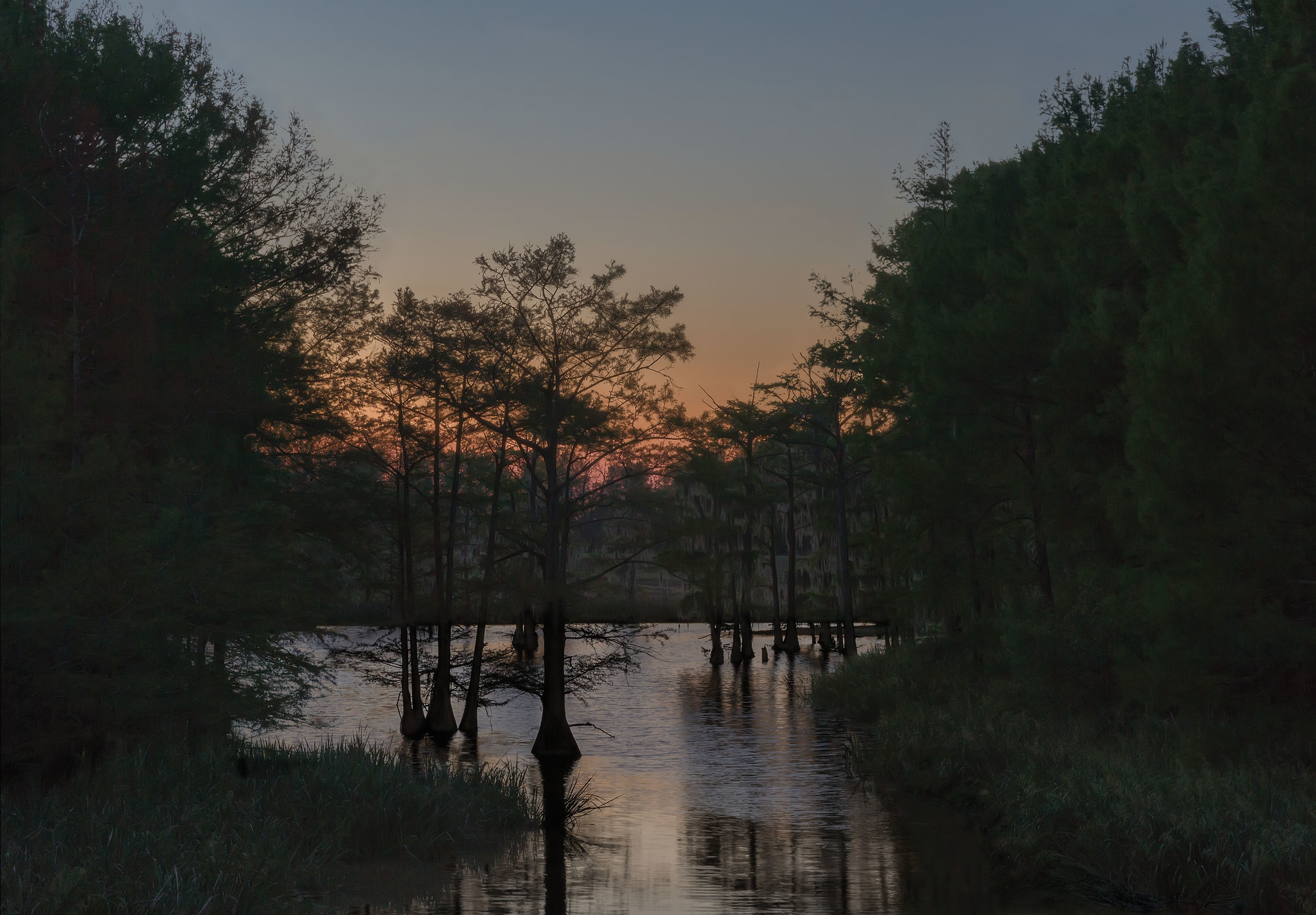 """Grant Parish, Louisiana,"" from Jeanine Michna-Bales' ""In Through Darkness to Light: Photographs Along the Underground Railroad."""