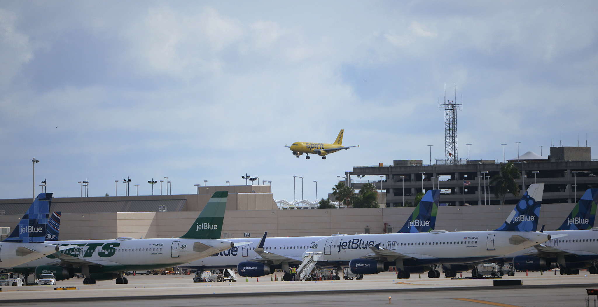 grounded south florida visitors return to air as northeast