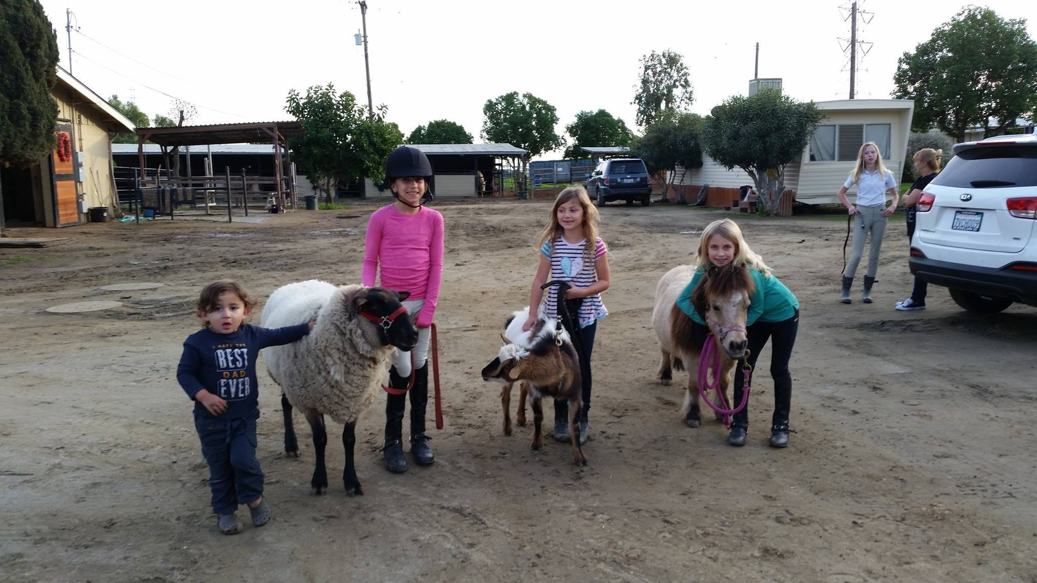 Kids enjoy the animals at Rancho Cielo.