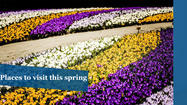 10 places to visit in spring