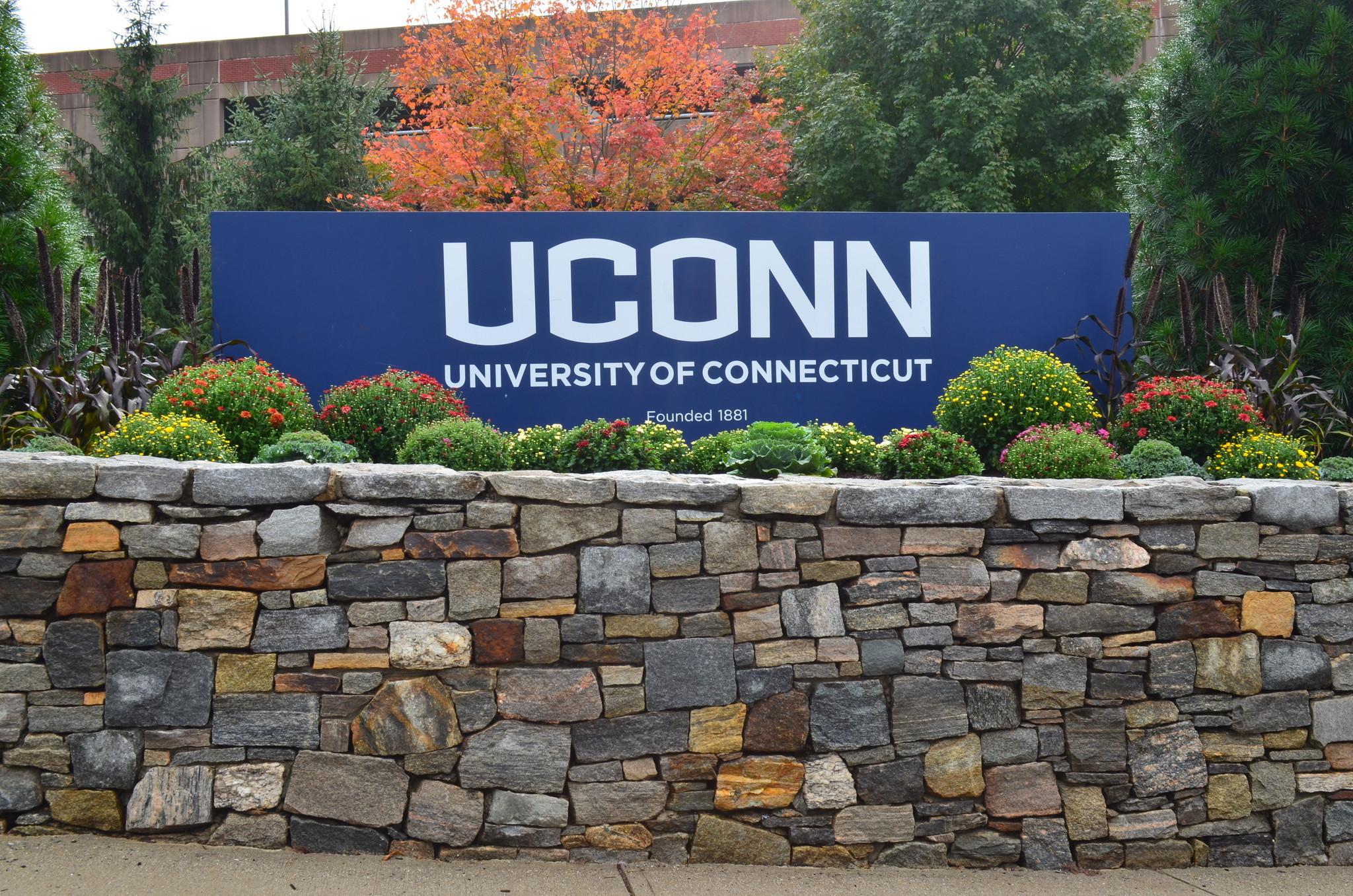 Uconn Graduate School Diversity Officer Out After Giving Husband Fellowship School Confirms