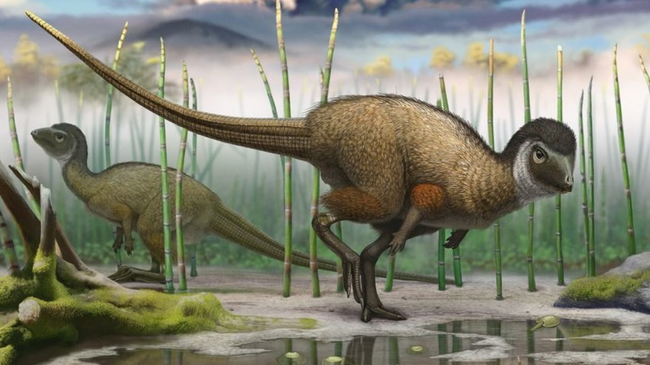 New findings about dinosaurs go against 130 years of science