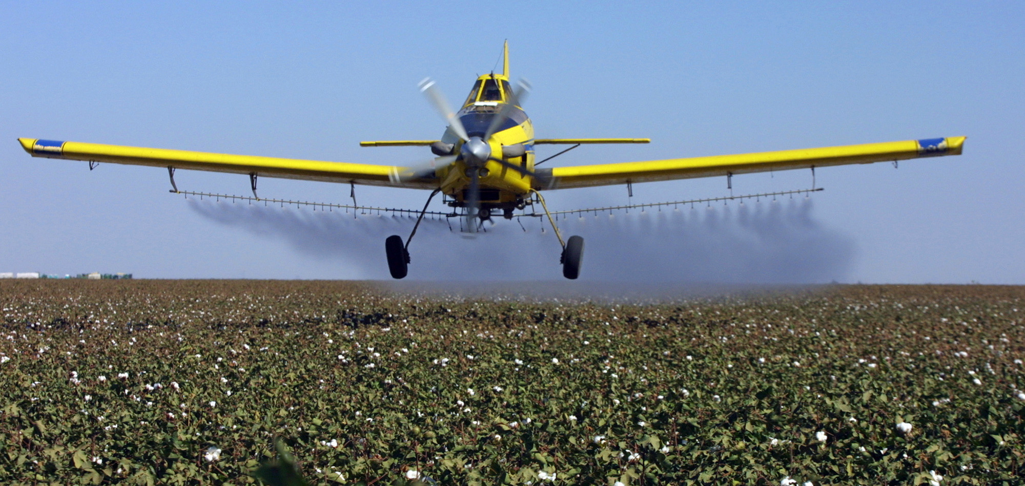 Trump's EPA undoes effort to ban pesticide linked to nervous system damage in kids