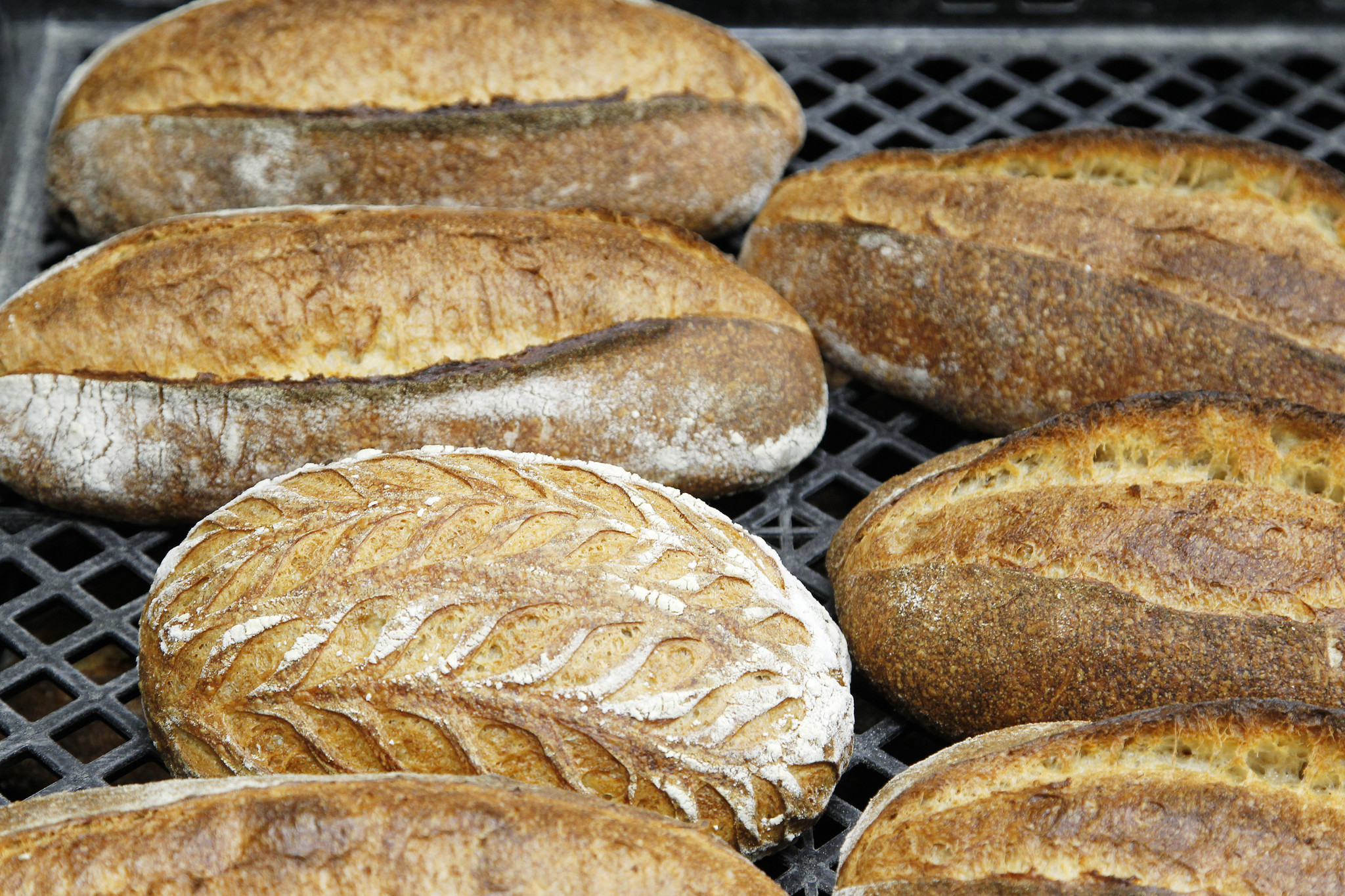 Baking Brothers Expand Old World Traditions