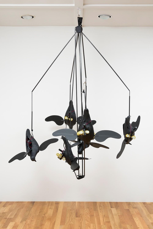 "Chadwick Rantanen's ""Crow Spread,"" 2017"