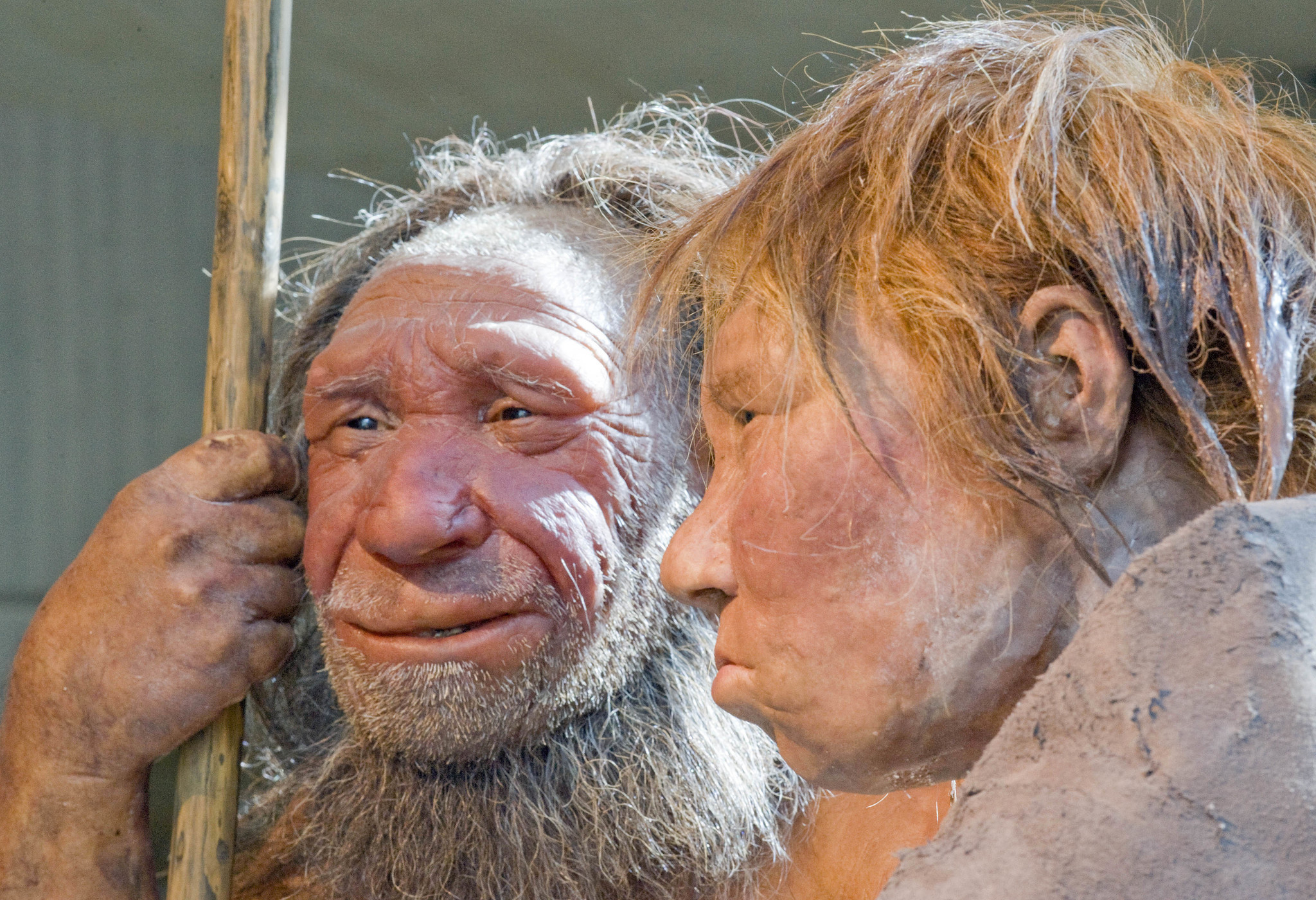 cannibalism For ancient humans, cannibalism wasn't just about nutrition: study -  Chicago Tribune
