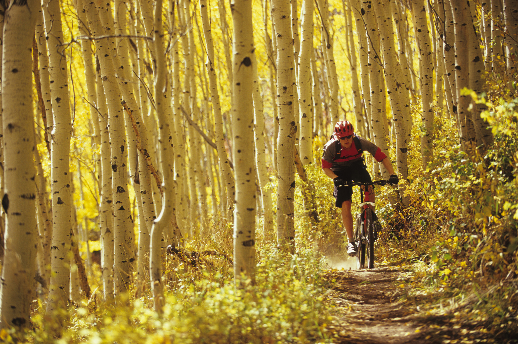 Alex Grant mountain biking in Park City, Utah.