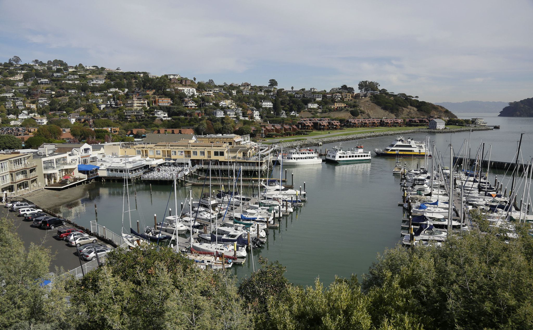 A couple of ferries at top right pull into Tiburon, Calif.