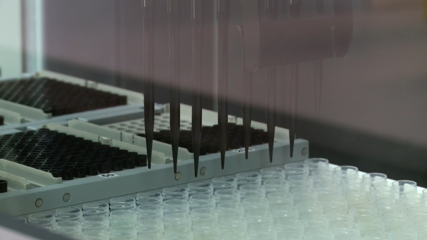 DNA is extracted at 23andMe's genotyping lab.