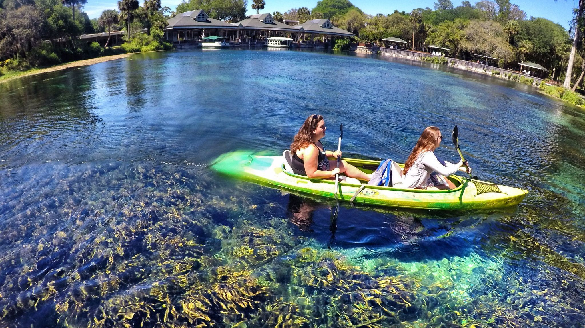 Crystal springs florida glass bottomed boats