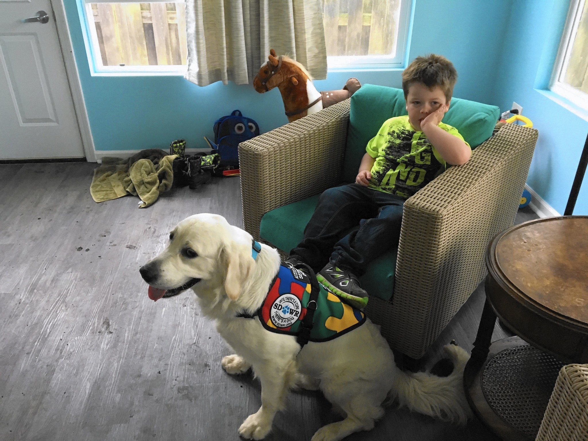 Grayslake boy with autism s service dog in Easter surprise