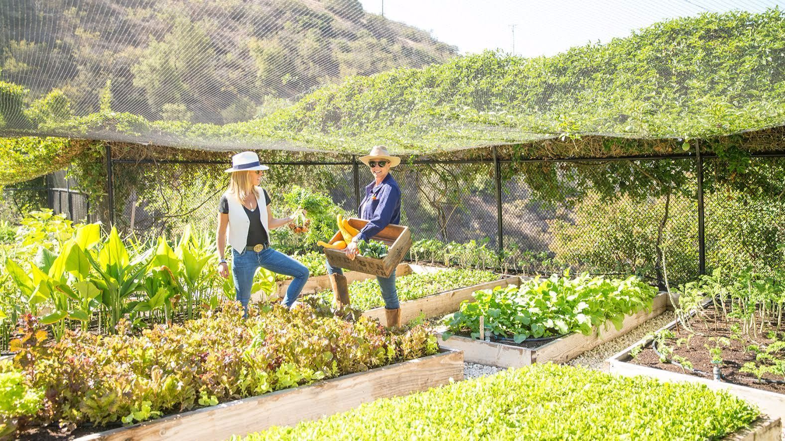 "Alice Bamford and Ann Eysenring, authors of ""One Gun Ranch Malibu: Biodynamic Recipes for Vibrant Living,"" harvest lettuces at their 20-acre compound in Malibu."