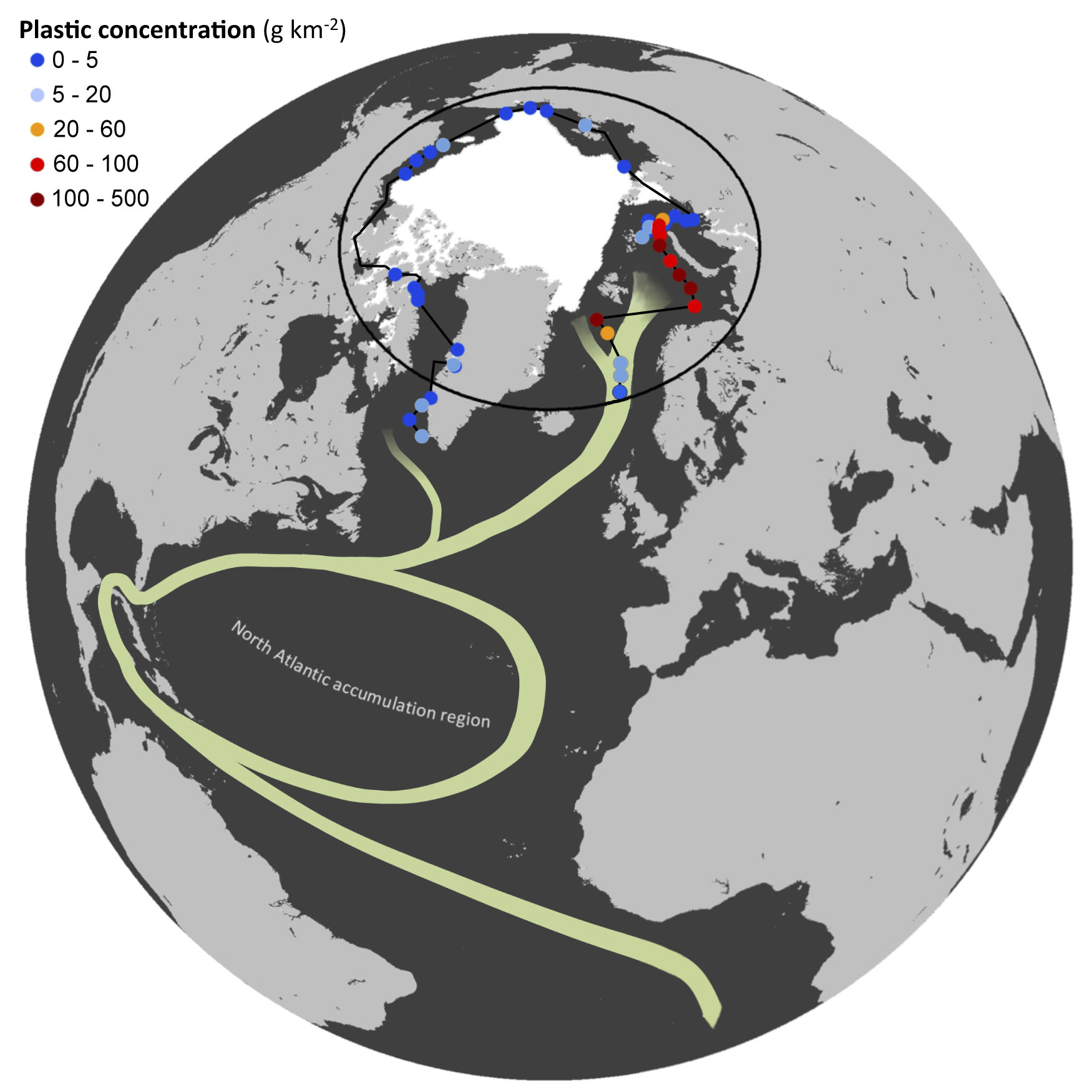 Locations and plastic concentrations of the sites sampled. The white area shows the extension of the polar ice cap in August 2013, and green curves represent the North Atlantic Subtropical Ocean Gyres and the Global Thermohaline Circulation poleward branch.