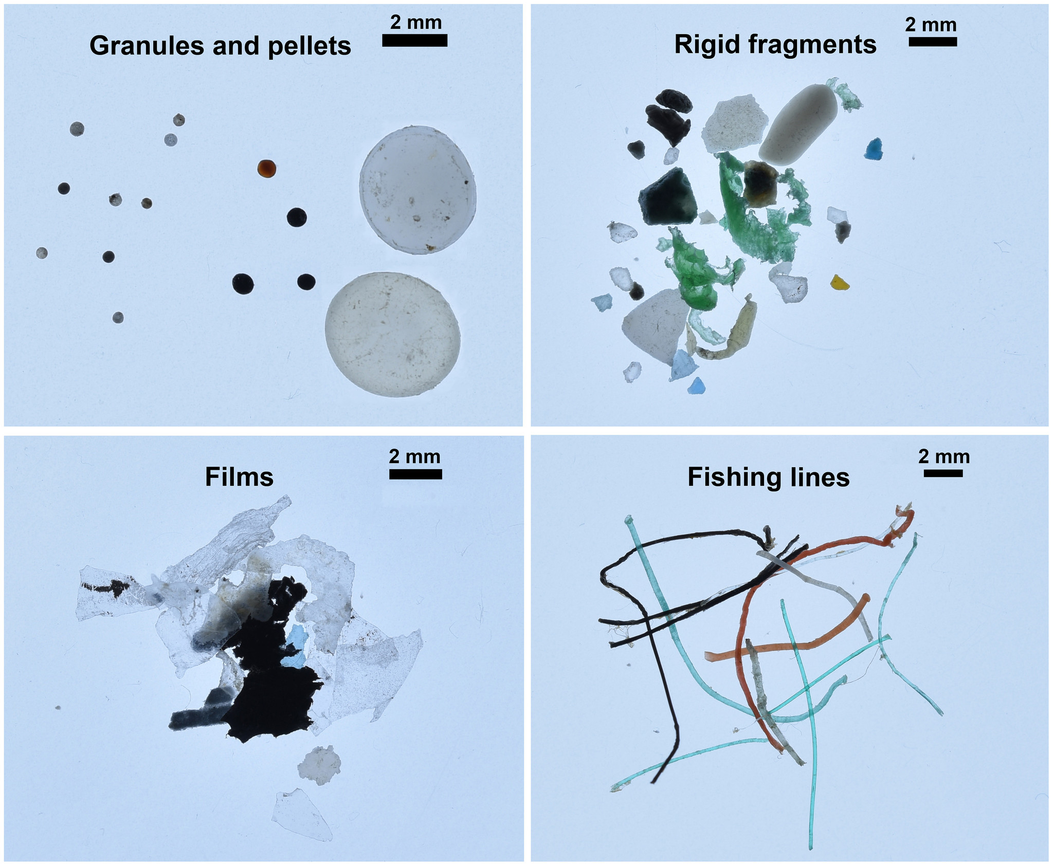 The different categories of microplastics found in the Arctic Ocean.