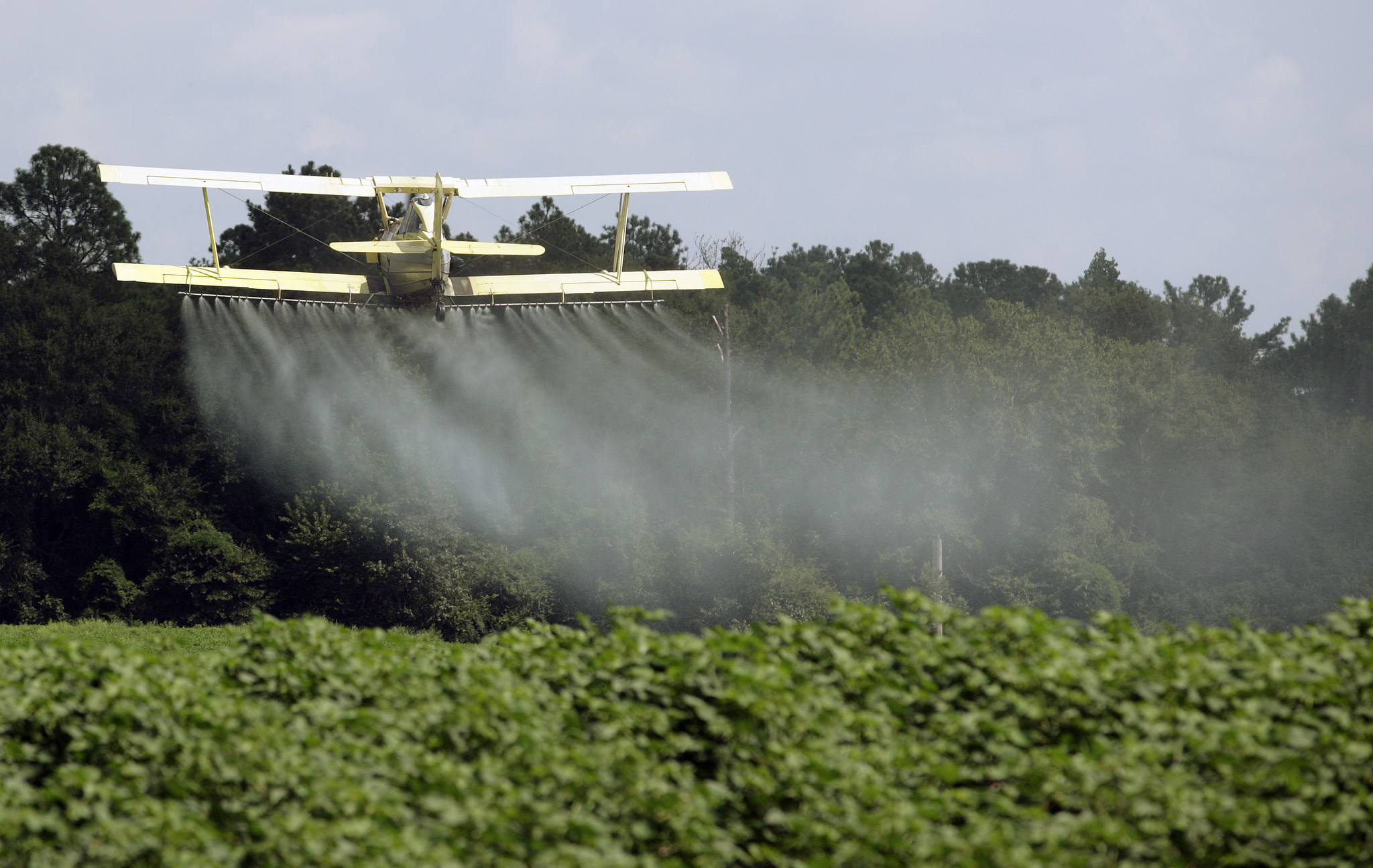 Dow Chemical is pushing Trump administration to ignore studies of toxic pesticide