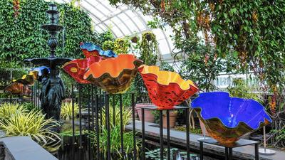 Chihuly glass exhibit blooms in the Bronx
