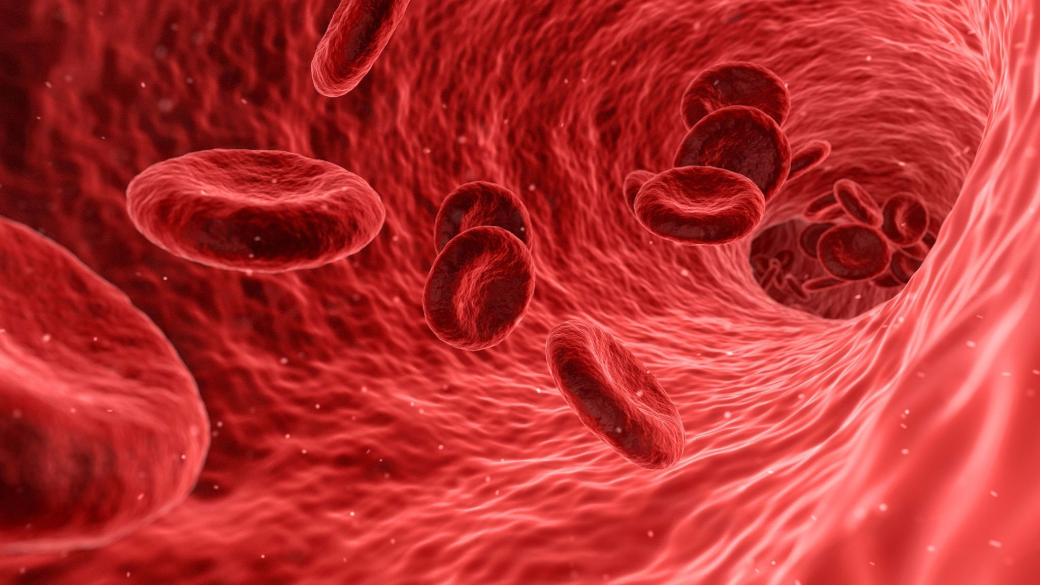 Lower risk of heart attack in those with blood type O, study finds