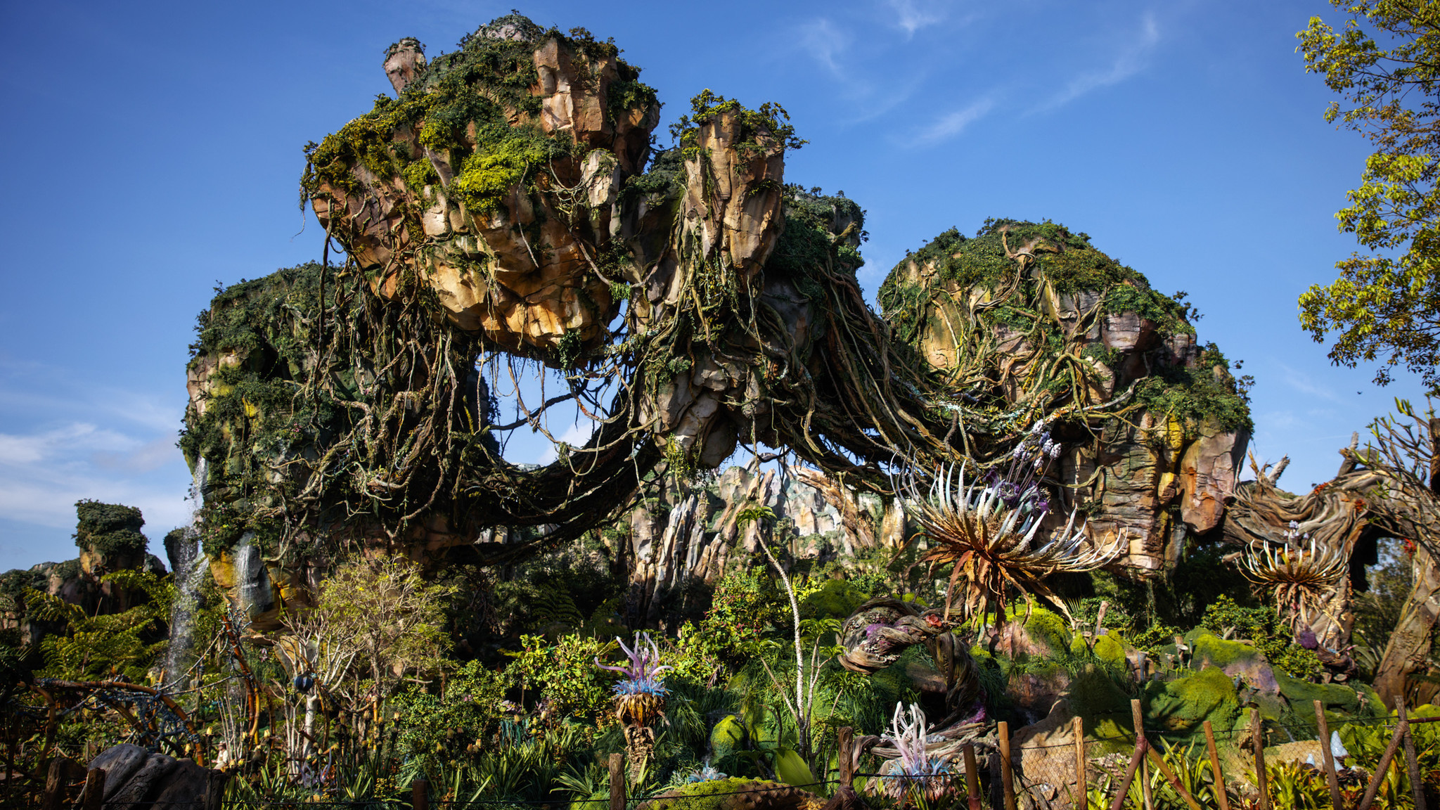 The floating mountains of Pandora.