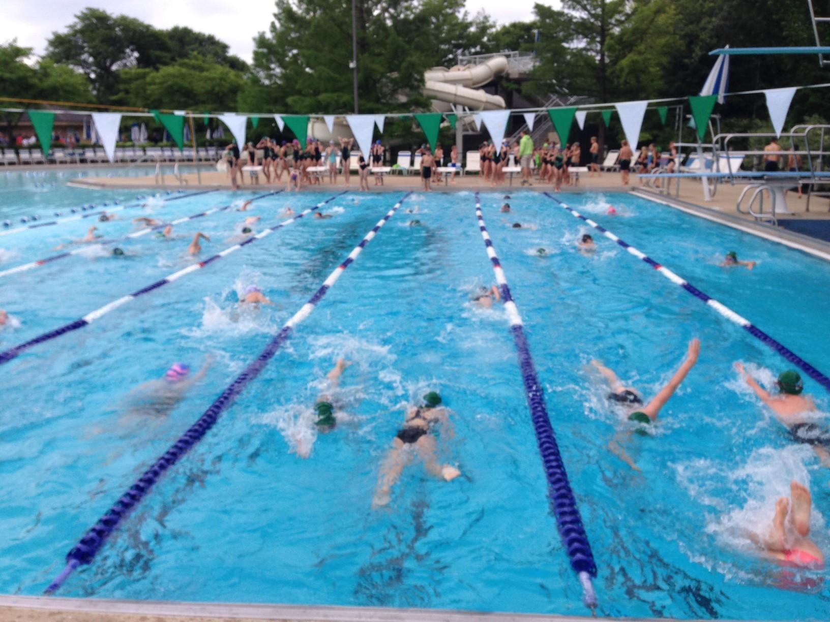 Gators Swim Team Registration Deadline Approaching Chicago Tribune