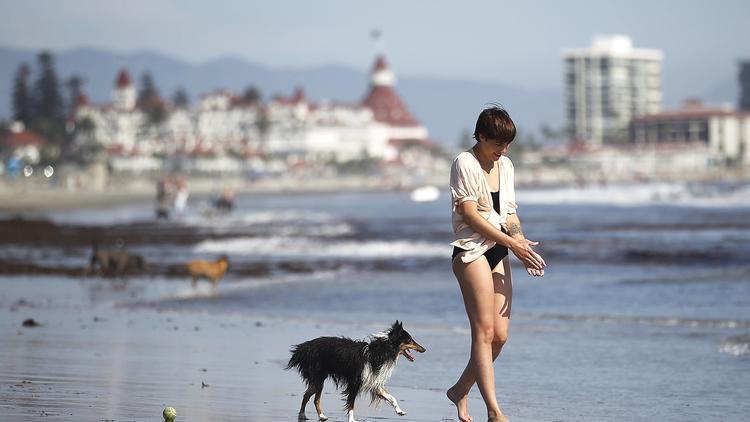 Solana Beach Dog Park