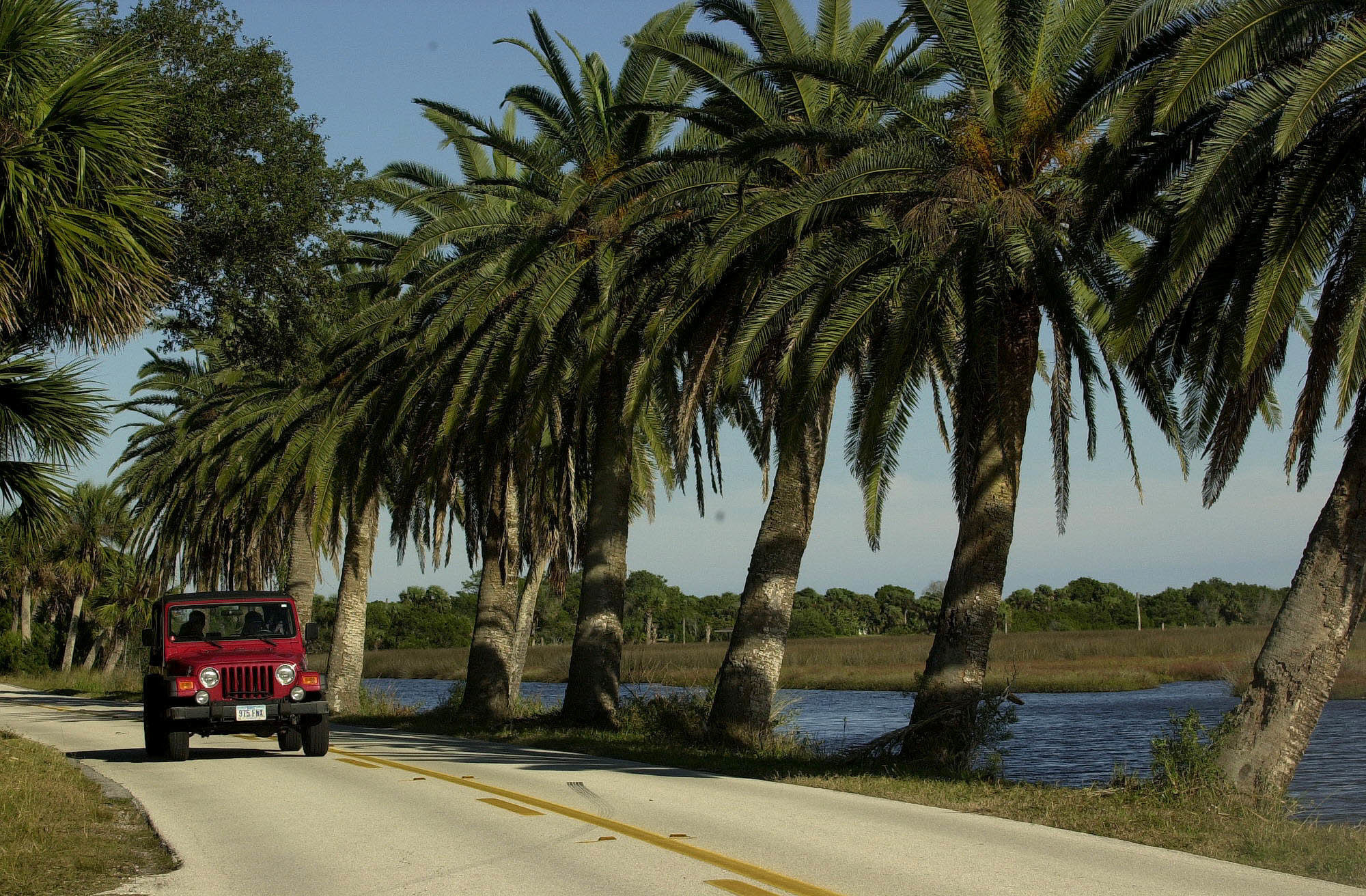 The loop offers beautiful twists and turns in volusia for Volusia county motor vehicle