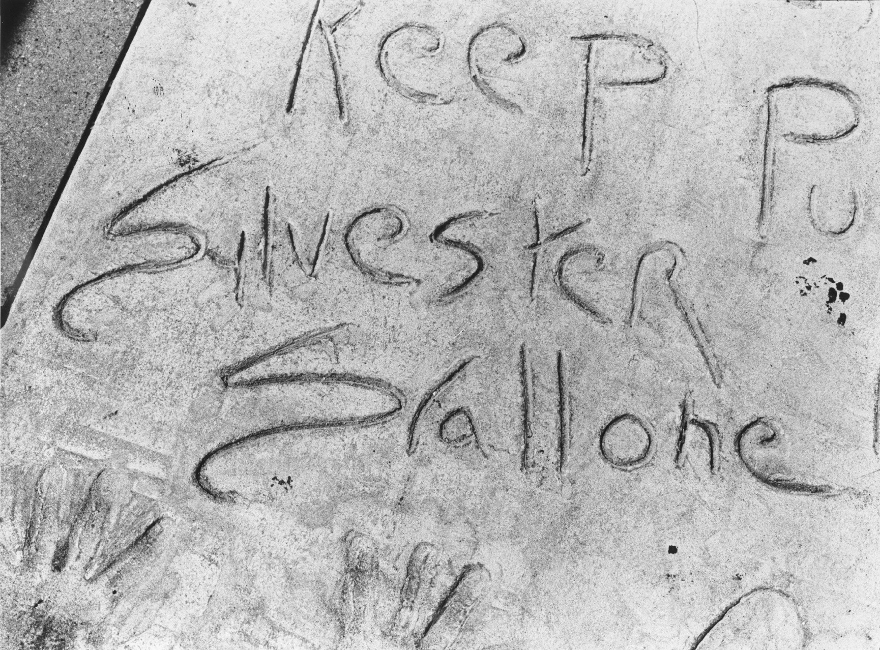 Sylvester Stallone's misspelled named etched in wet concrete in front of Mann's Chinese Theater.