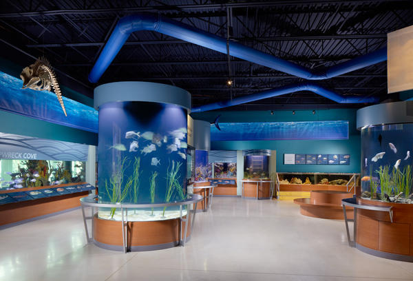 Free museum visits on saturday and sunday sun sentinel for Fish store virginia beach
