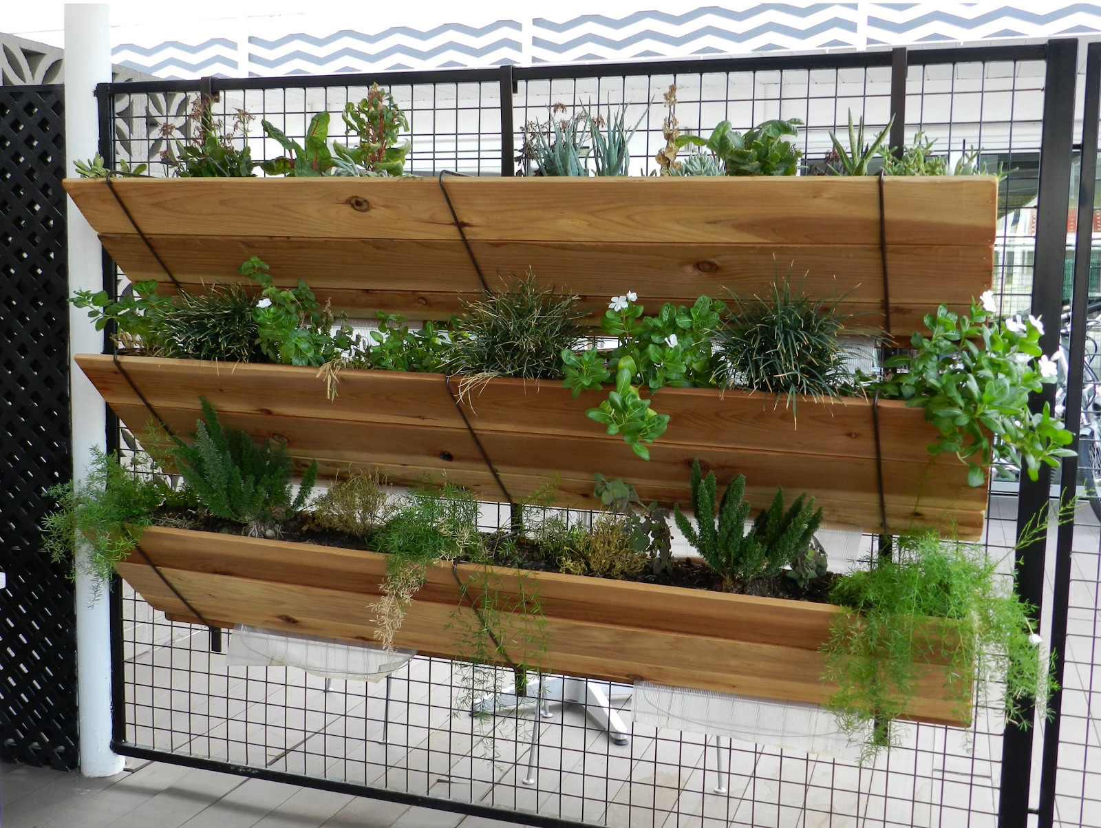 Vertical gardening 11 ways to get your vegetables to grow for Balcony vertical garden