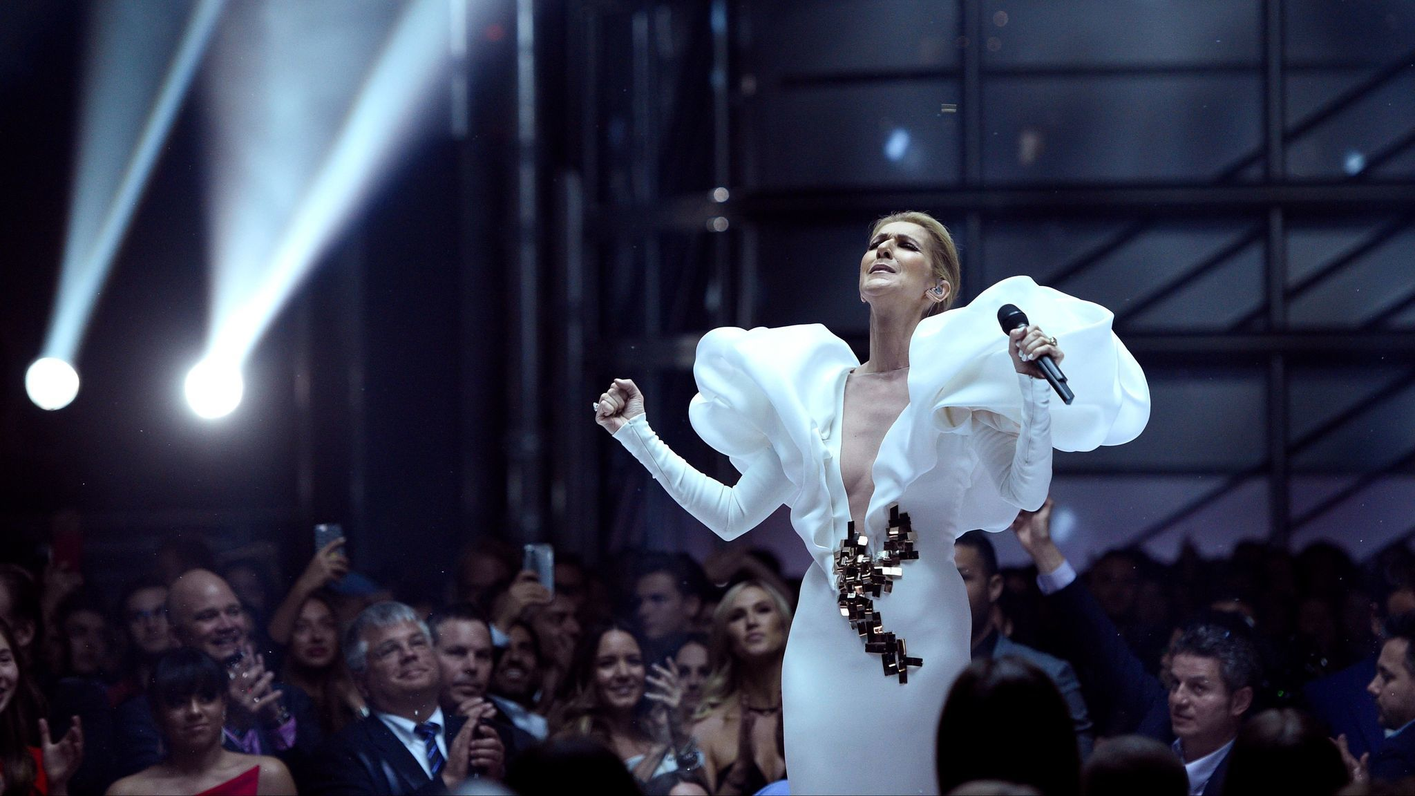 Celine Dion performs.
