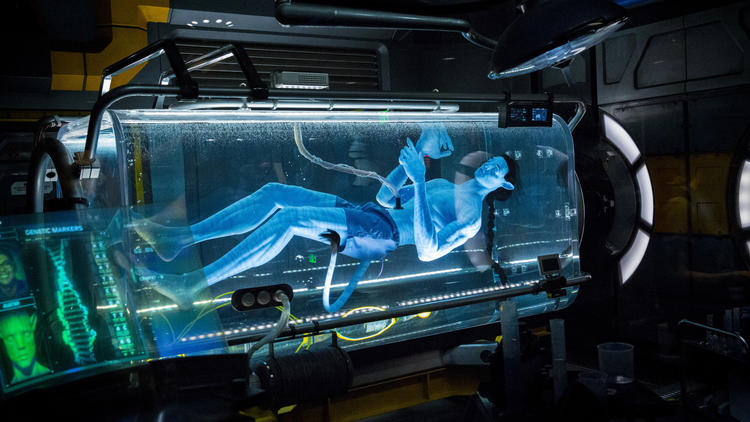 Pictures: Pandora - The World of Avatar, at Disney's Animal Kingdom