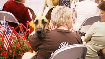 Langley Kennel Club ready for 117th dog show