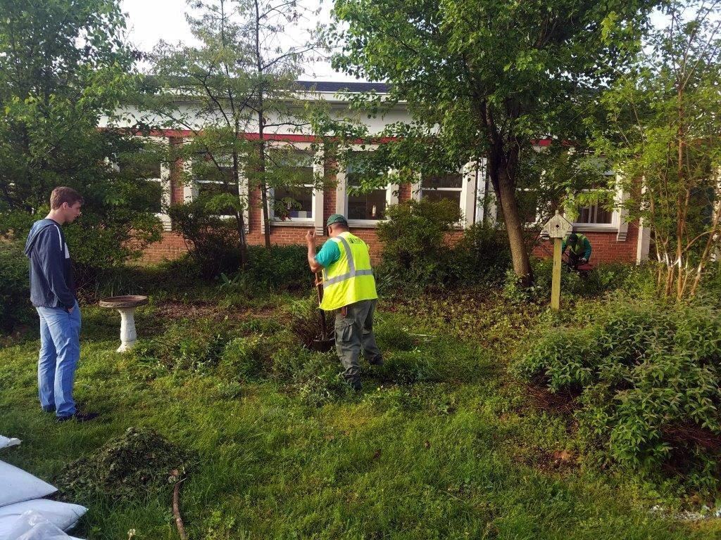 South County: Southern senior creates garden for Deale Elementary ...