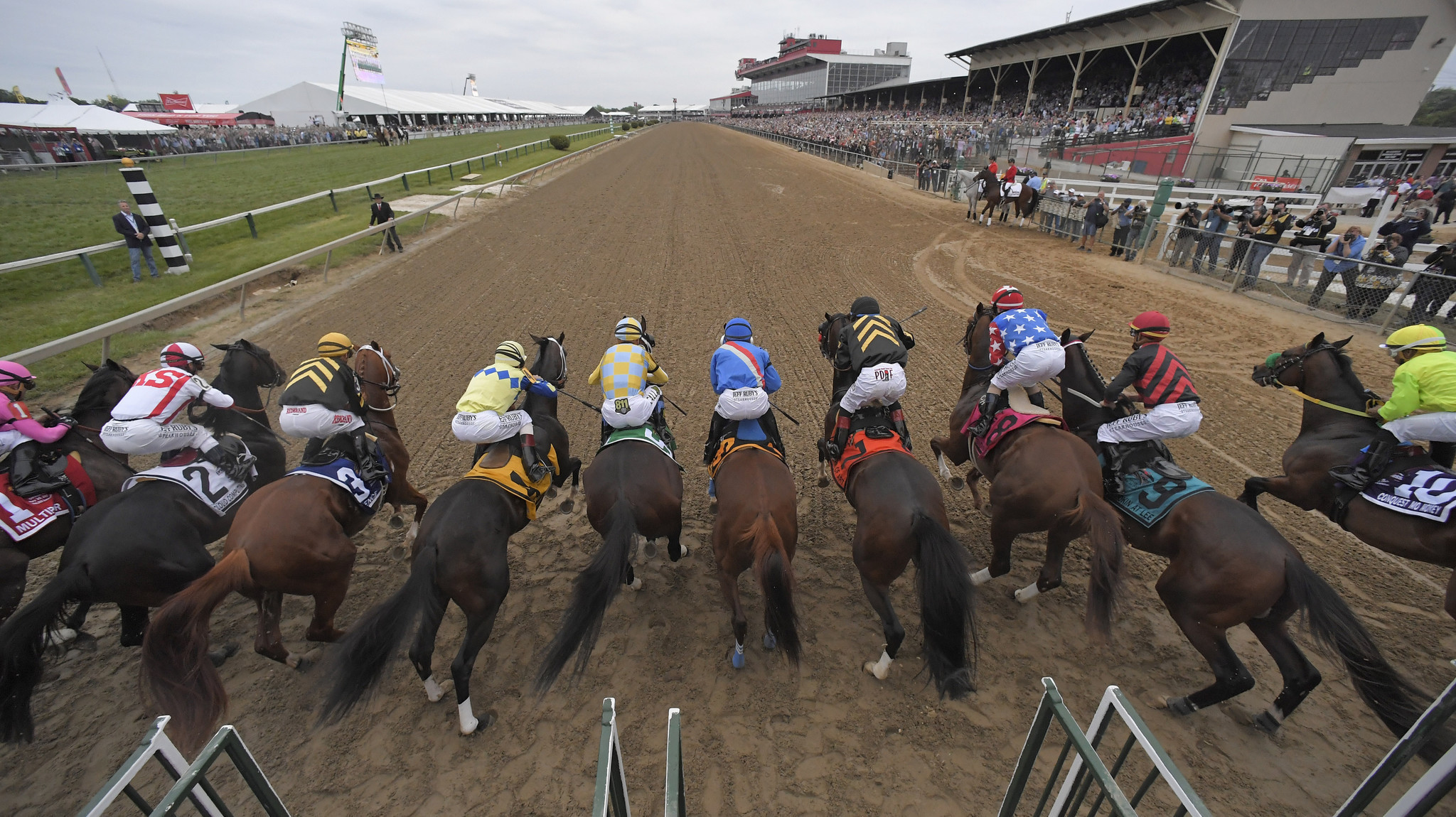 2017 Black-Eyed Susan Stakes Preview, and Friday Pimlico Stakes Selections